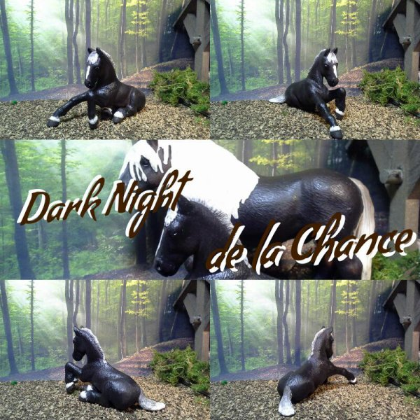Dark Night de la Chance