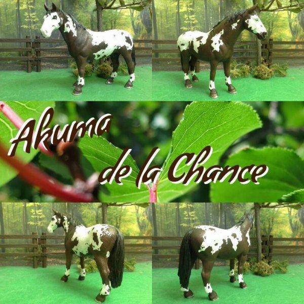 Akuma de la Chance
