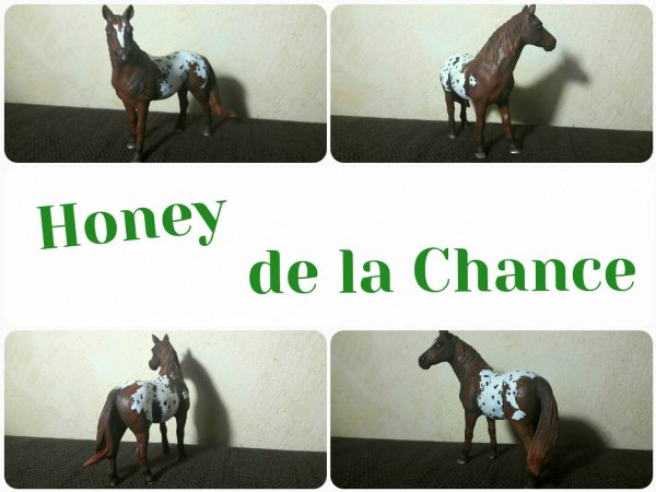 Honey de la Chance