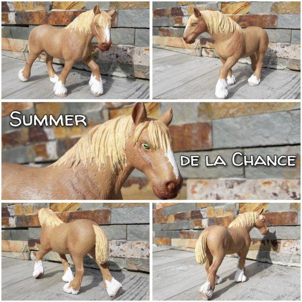 Summer de la Chance