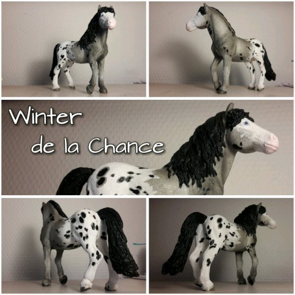 Winter de la Chance