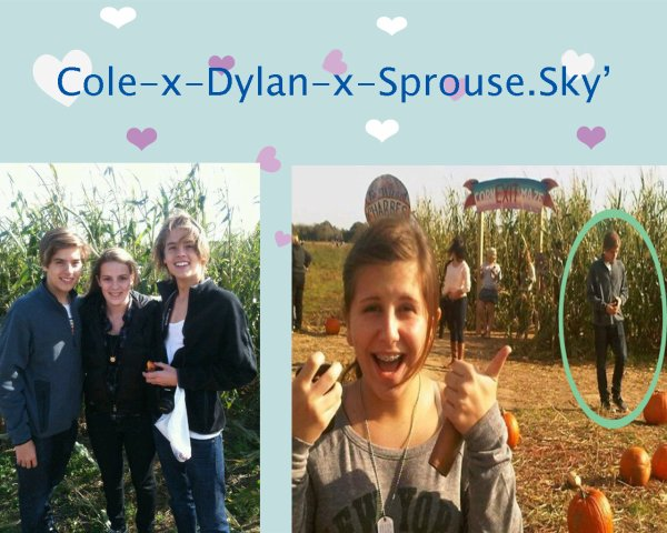 Hier Dylan et Cole ont visité la ferme Harbes