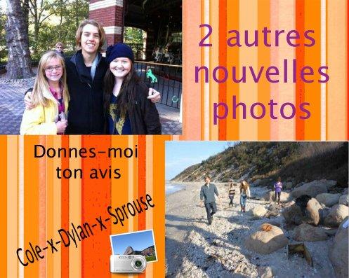 Du nouveau --> 1) Ferme Hardes - 2) A la plage et dans les rochers - 3) Deux nouvelles photos