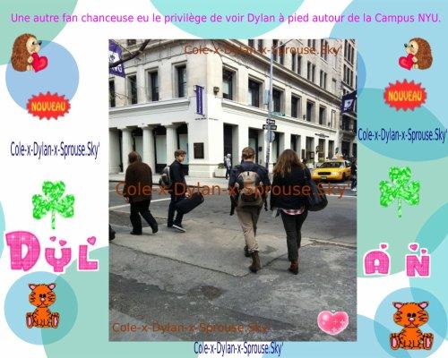 News : 5 montages, 1 Tweet, 1 Vidéo ♥