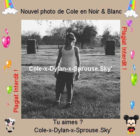 Article > Photos - Photos