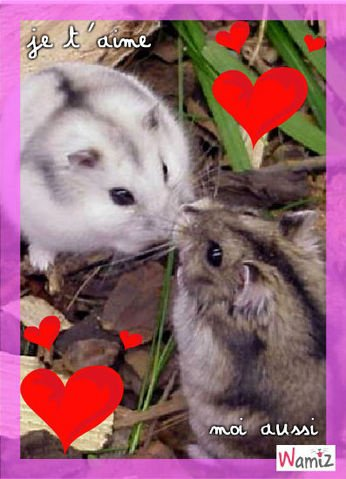 Je t'aime ! ^^ Mâle ou Femelle ??
