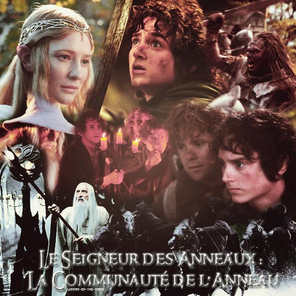 Le Seigneur des anneaux : la communauté de l'anneaux