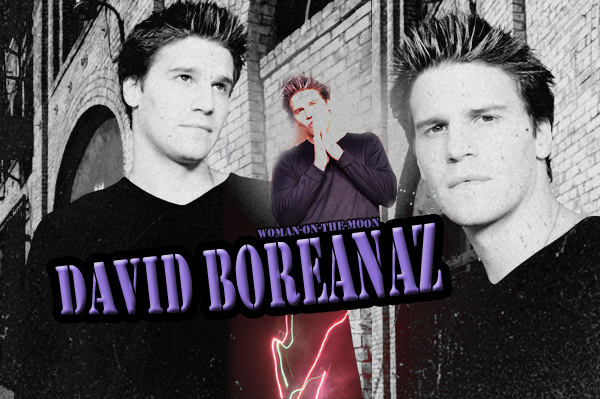 Acteur : David Boreanaz
