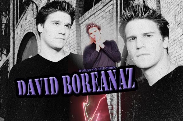 Acteur : David Boreanaz