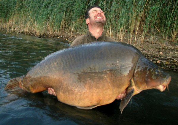 Le graal , Nautilus a 36,9 kg !!!
