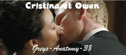 Grey's Anatomy, saison 9 : Cristina et Owen, couple maudit