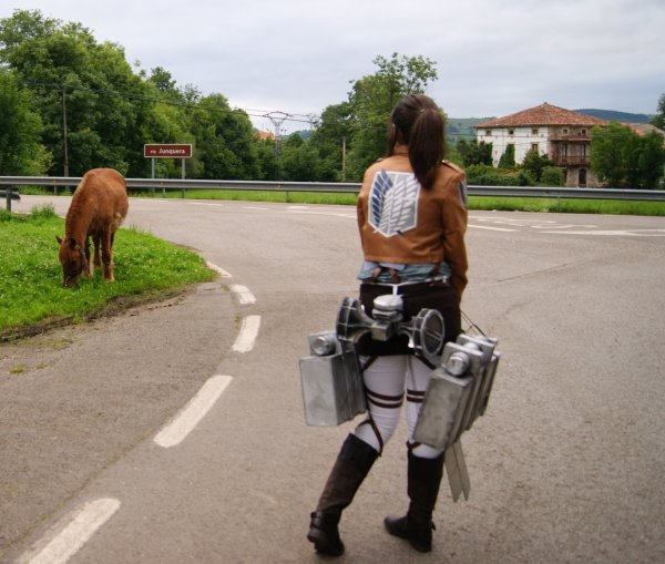 Revient ici cheval ! ( Eren femme )