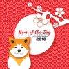 Bonne année et Bonne santée a tous et toutes