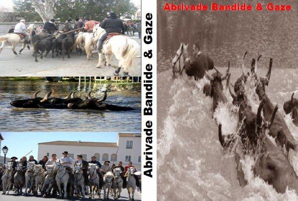 Abrivade Bandide et Gaze
