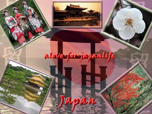 Pour le montage concours sur le Japon