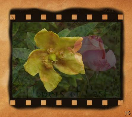 Une photo est un souvenir du passé et une création une expression de l'imaginaire présent