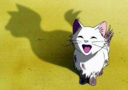 Le Royaume Des Chats.