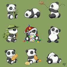 panda !!!