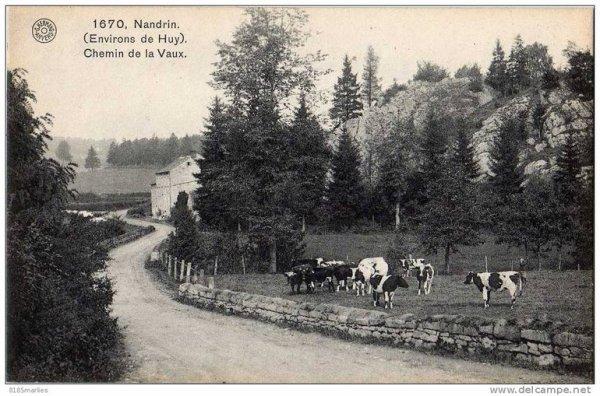 1670.Nandrin.(Environs de Huy)-Chemin de la Vaux.