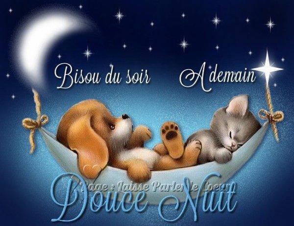 Petit passage furtif, pour vous souhaiter une bonne nuit avec des rêves bleus...
