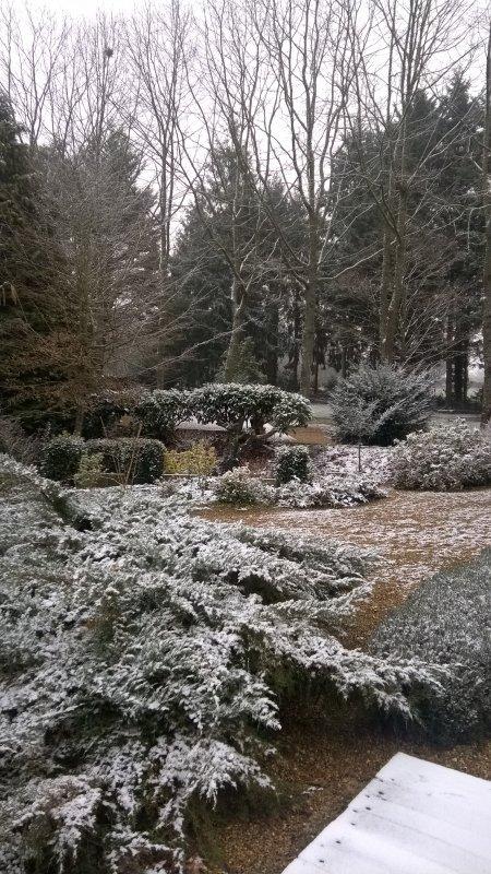 Saupoudrage de neige... j'aime bien !