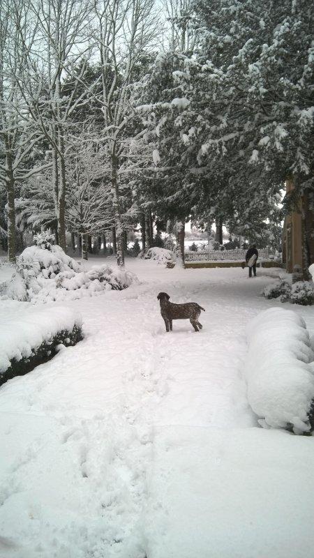 20 cms de neige ce matin..