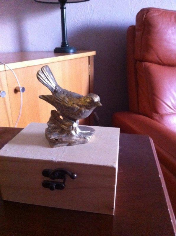 le seul trophée que je garde oiseau en or CPSN spy