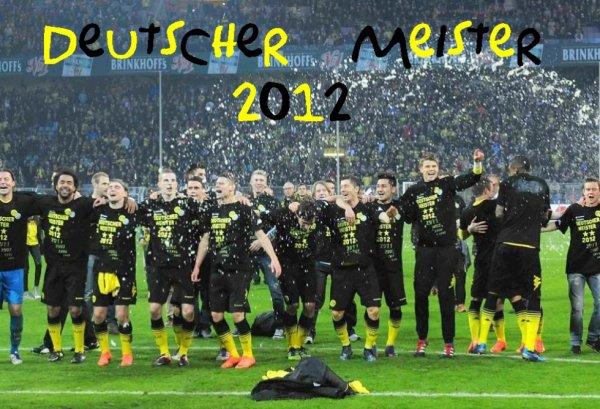 Deutscher Meister 2011/2012
