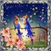 §bonne soirée je vous souhaite un très bel printemps heureux§