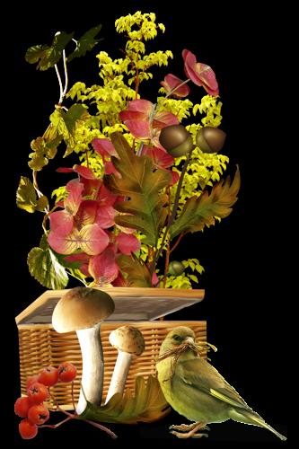 bonne nuit et zen semaine à tous et à toutes bises jaunes et fraternelless
