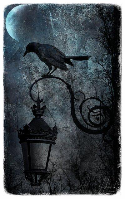 """"""" Voyage au Pays d'Halloween (titre non definitif) """""""