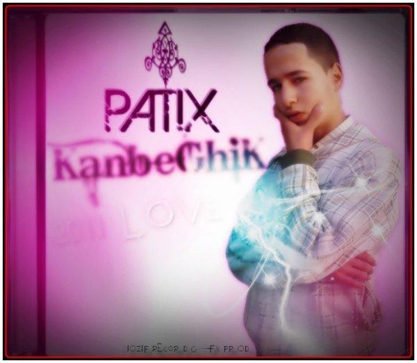StyLE_LoVe(PaTiX2011)