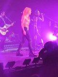 Photo de Shakira-Belgium