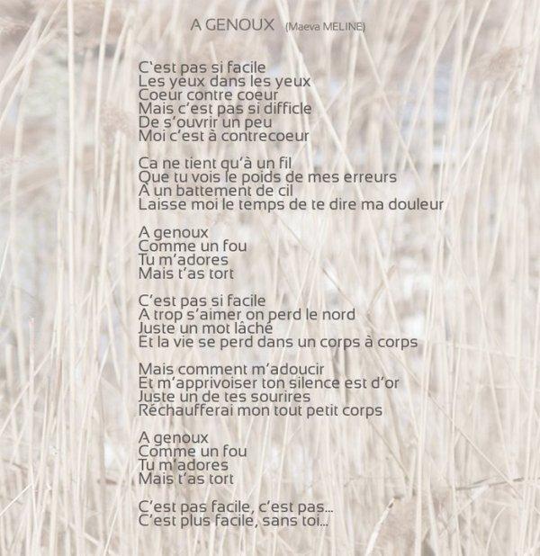 Les paroles d'A Genoux