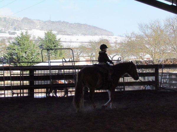 équitation western avec barns