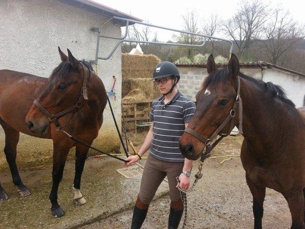 mes chevaux et moi
