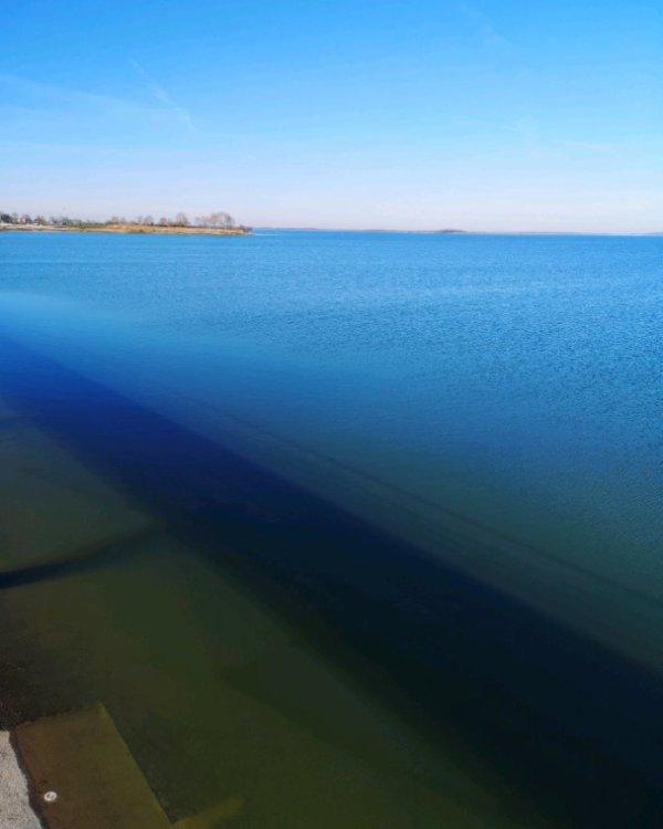 Dimanche 17 février 2019 Saint dizier lac du der aller retour