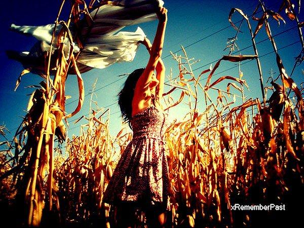 ~ La nostalgie revient lorsque le présent n'est pas à la hauteur du passé...