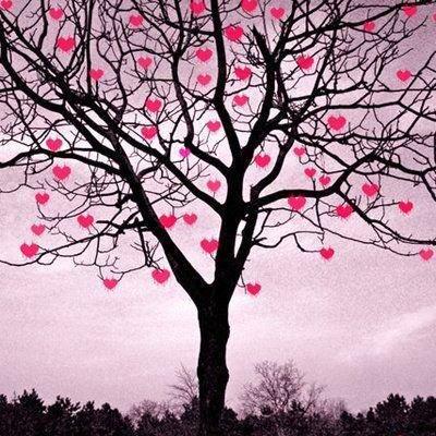 L'Amour pas de sens  !!!