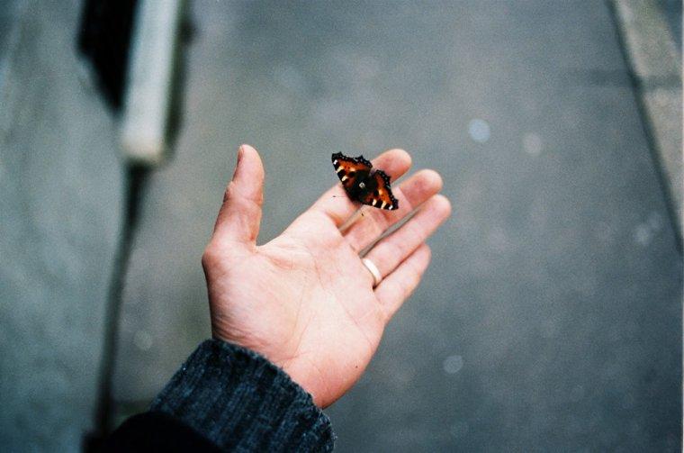 La seule vérité, en fin de compte, c'est de mener une vie passionnée, même si elle se rebelle et vous frappe au visage.
