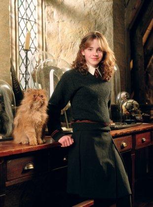 Hermione Granger dans les 3 premiers Harry Potter