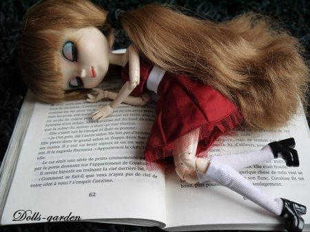 Akane : Le livre