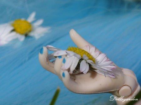 Fleur aux pétales d'or...