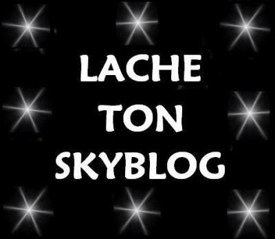 Lache ton skyblog