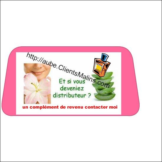 voici mon lien du site http://aube.clientsmalins.com