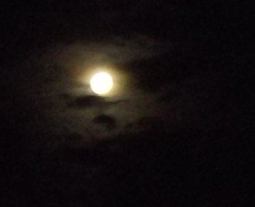 """la pleine lune du 04JUN2012 pour """"Wakanda5-7-9""""""""elfee-708"""""""