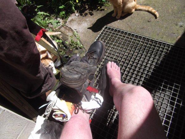 mes protections moletières permettent de solidariser la chaussure au porteur