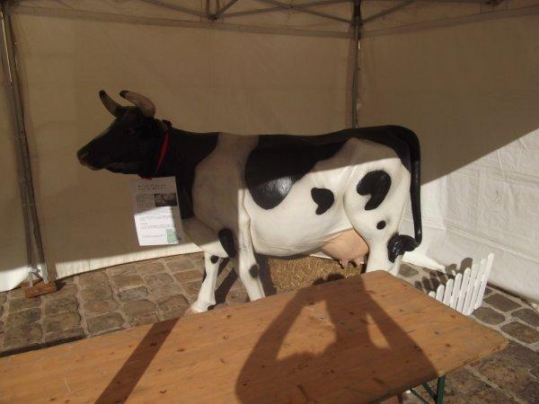 pour amis amateurs d'animaux : une vache