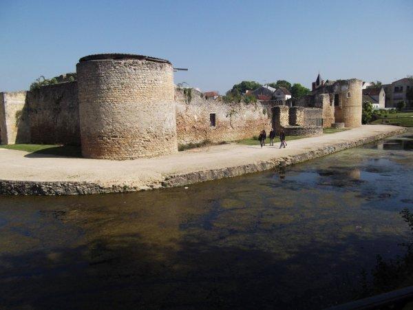 le chateau de Brie Comte Robert