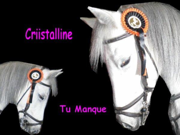 Criistaliine